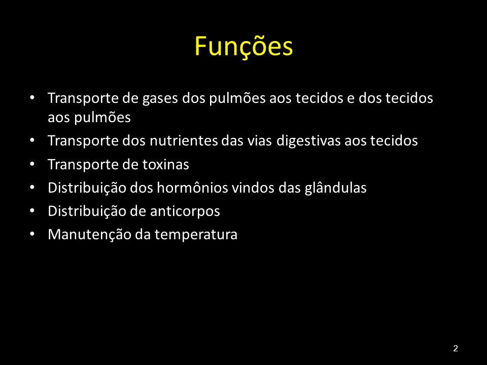 Funções Transporte de gases dos pulmões aos tecidos e dos tecidos aos pulmões. Transporte dos nutrientes das vias digestivas aos tecidos.