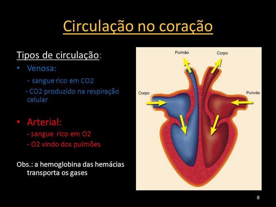 Circulação no coração Tipos de circulação: Arterial: Venosa: