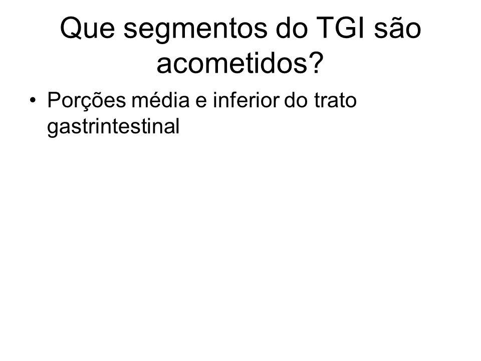 Que segmentos do TGI são acometidos