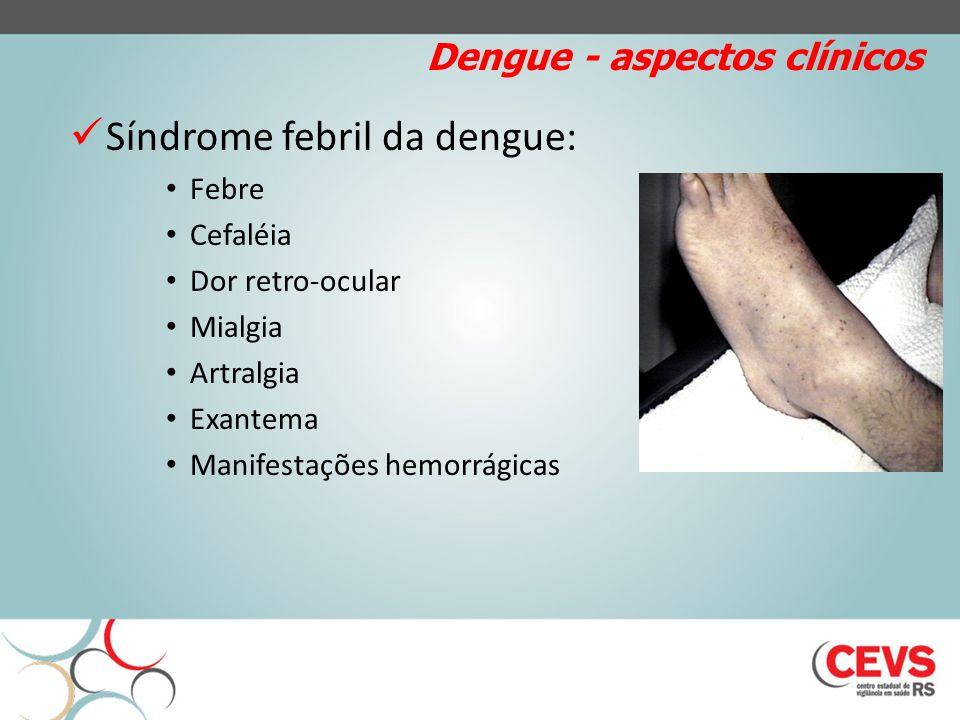Dengue - aspectos clínicos