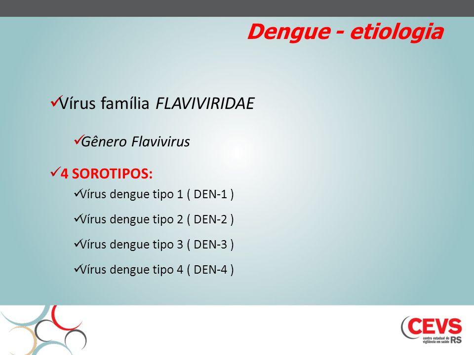 Dengue - etiologia Vírus família FLAVIVIRIDAE Gênero Flavivirus