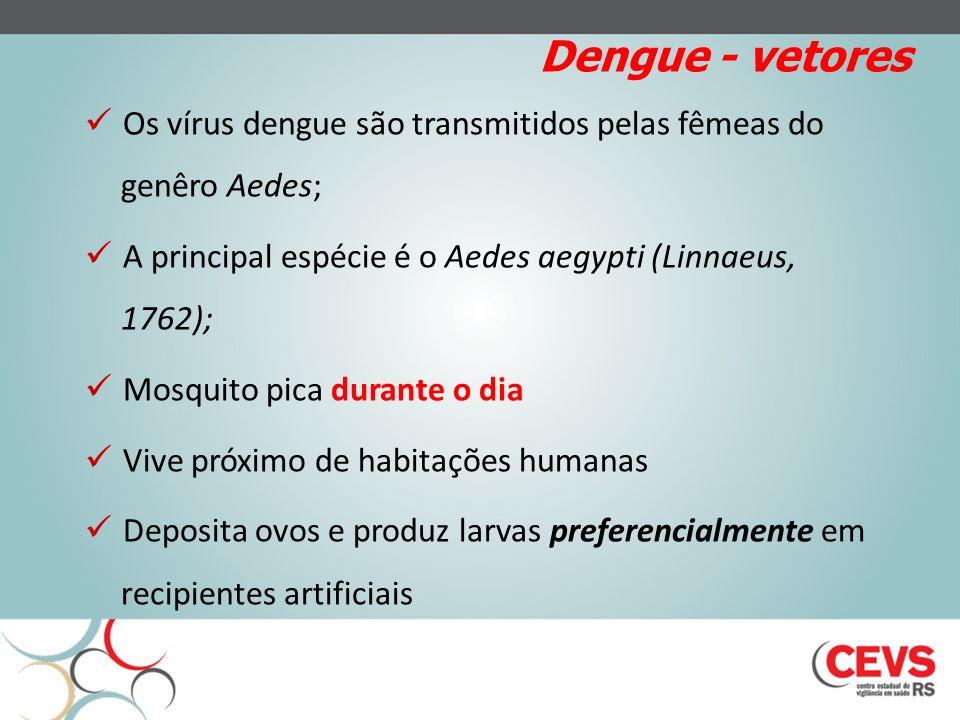 Dengue - vetores Os vírus dengue são transmitidos pelas fêmeas do genêro Aedes; A principal espécie é o Aedes aegypti (Linnaeus, 1762);