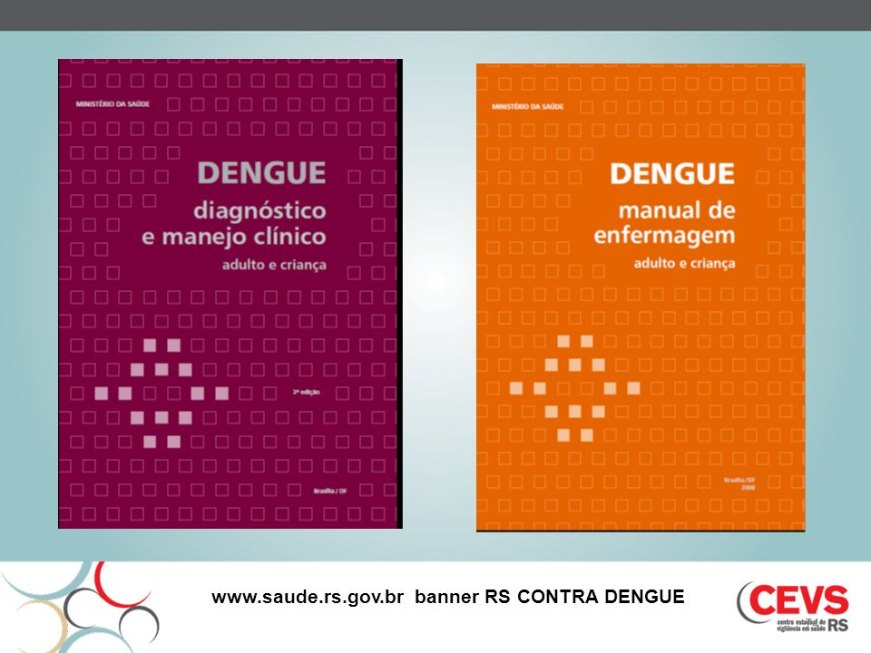 www.saude.rs.gov.br banner RS CONTRA DENGUE