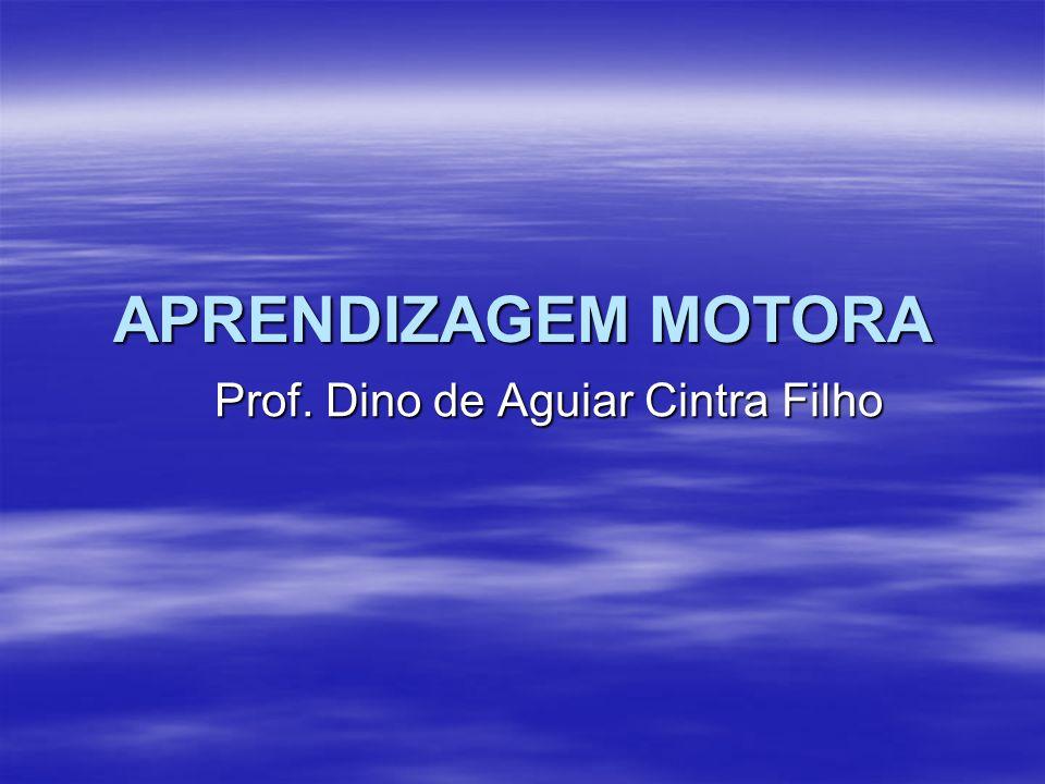 Prof. Dino de Aguiar Cintra Filho
