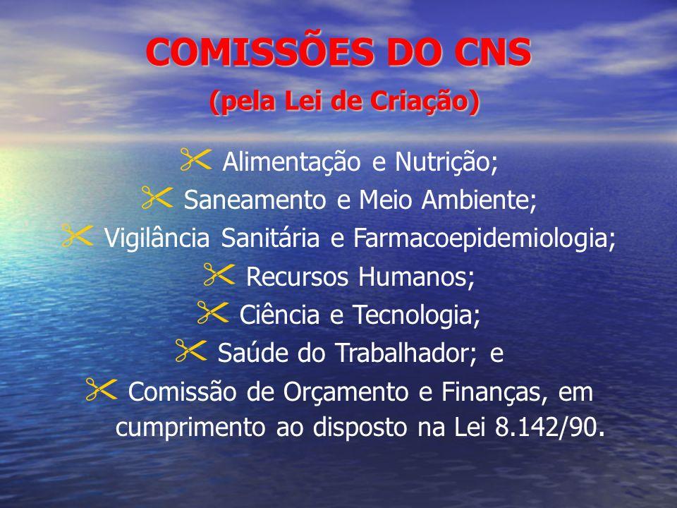COMISSÕES DO CNS (pela Lei de Criação)
