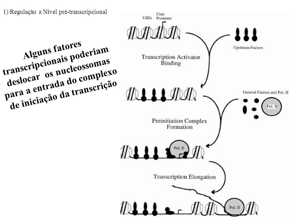 transcripcionais poderiam deslocar os nucleossomas
