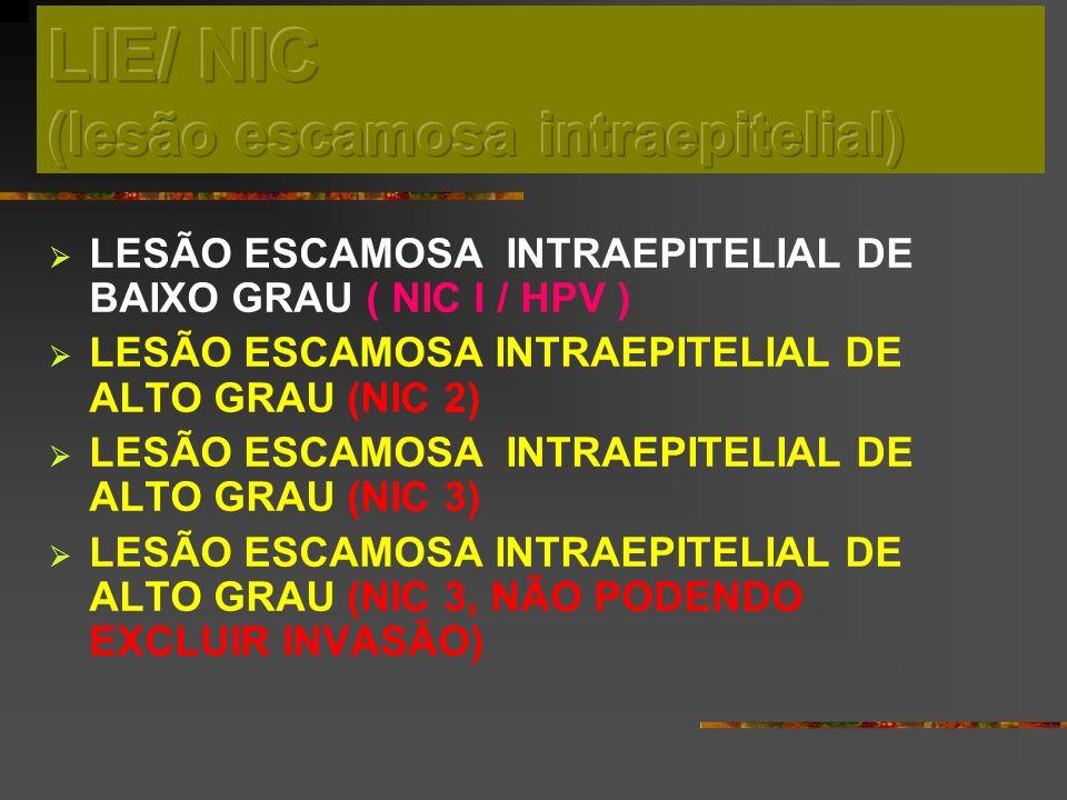 LIE/ NIC (lesão escamosa intraepitelial)