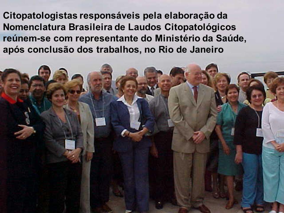 Citopatologistas responsáveis pela elaboração da Nomenclatura Brasileira de Laudos Citopatológicos reúnem-se com representante do Ministério da Saúde, após conclusão dos trabalhos, no Rio de Janeiro