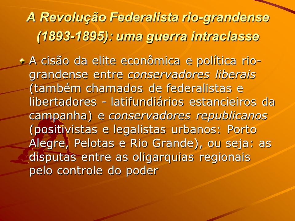 A Revolução Federalista rio-grandense (1893-1895): uma guerra intraclasse