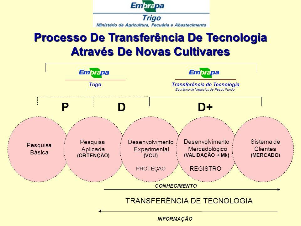 Processo De Transferência De Tecnologia Através De Novas Cultivares
