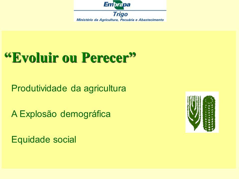 Evoluir ou Perecer Produtividade da agricultura A Explosão demográfica Equidade social