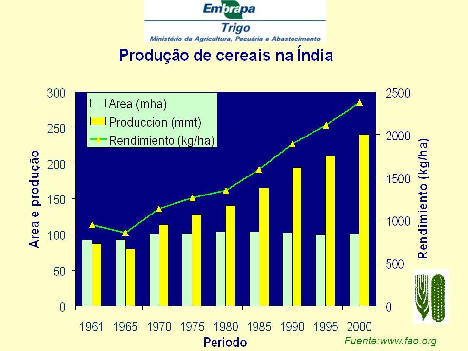 Fuente:www.fao.org