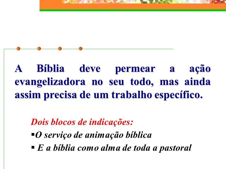 A Bíblia deve permear a ação evangelizadora no seu todo, mas ainda assim precisa de um trabalho específico.