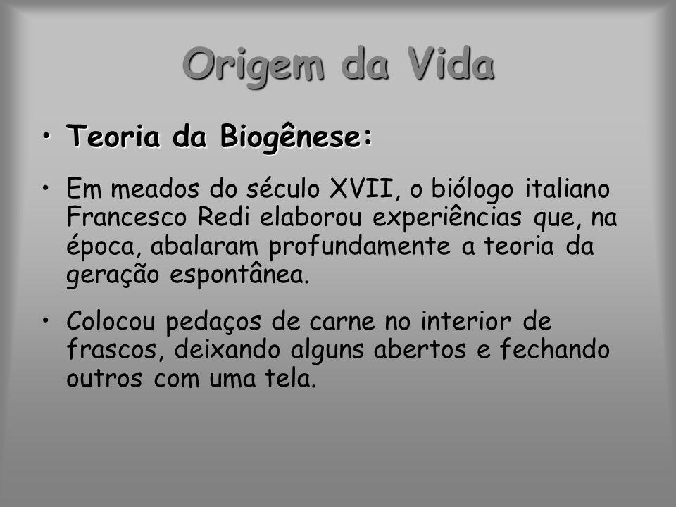 Origem da Vida Teoria da Biogênese: