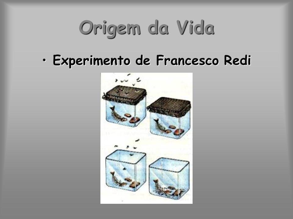 Experimento de Francesco Redi