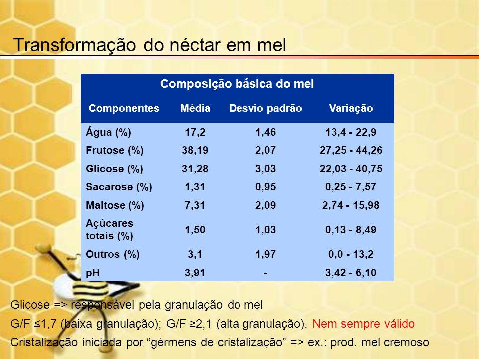 Composição básica do mel