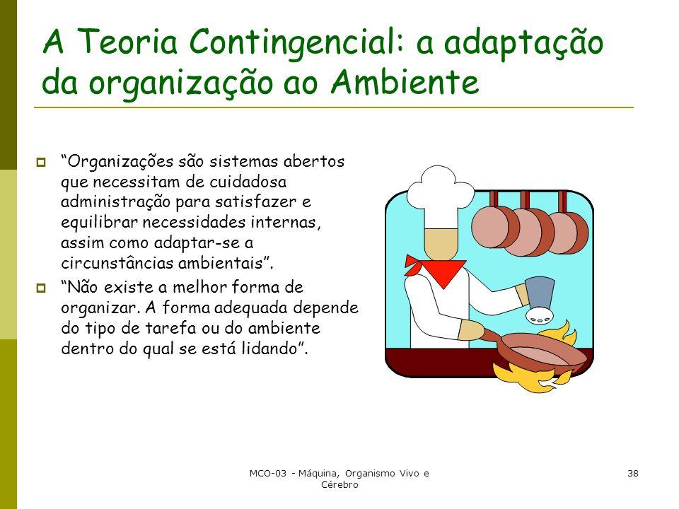 A Teoria Contingencial: a adaptação da organização ao Ambiente