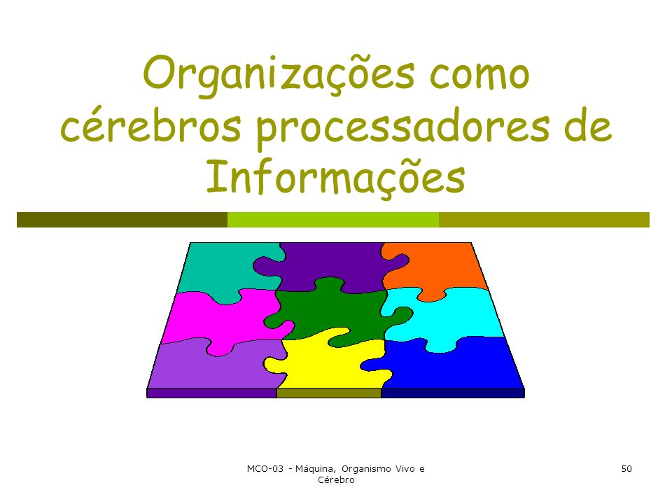 Organizações como cérebros processadores de Informações
