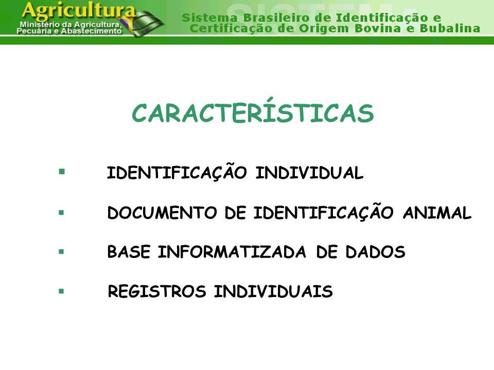 CARACTERÍSTICAS IDENTIFICAÇÃO INDIVIDUAL