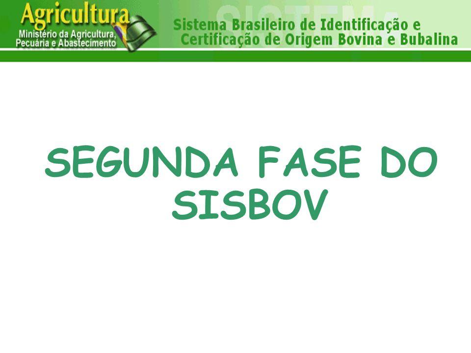 SEGUNDA FASE DO SISBOV