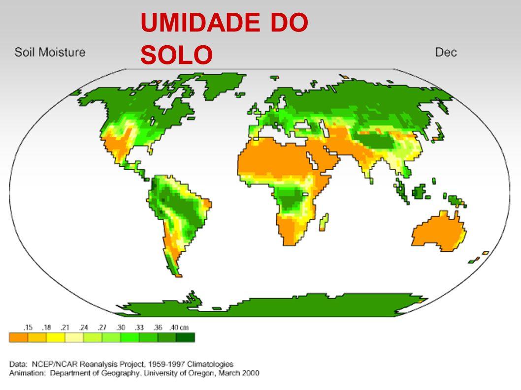 UMIDADE DO SOLO
