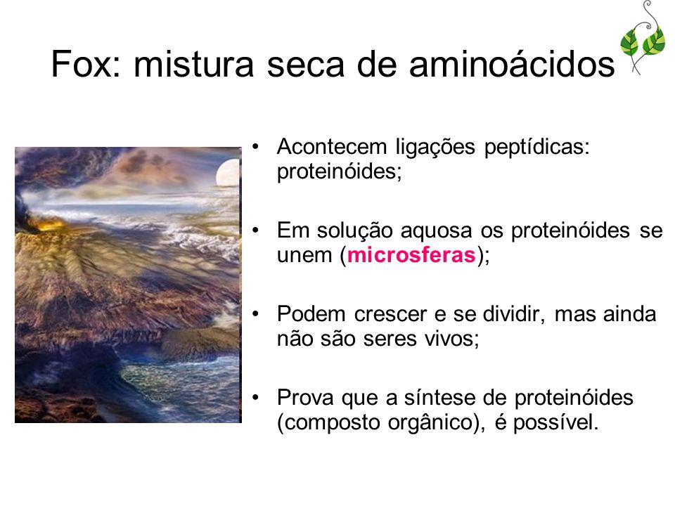Fox: mistura seca de aminoácidos