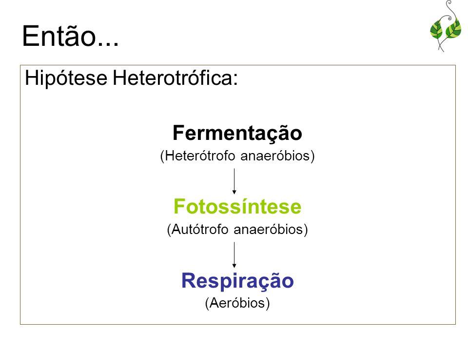 Então... Hipótese Heterotrófica: Fermentação Fotossíntese Respiração