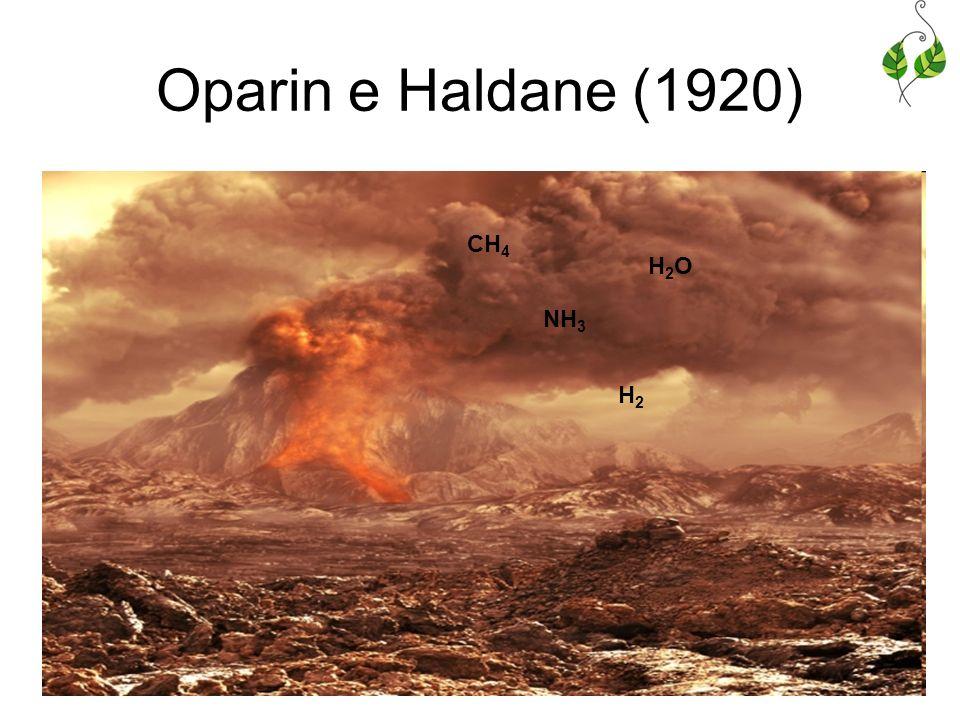 Oparin e Haldane (1920) CH4 H2O NH3 H2
