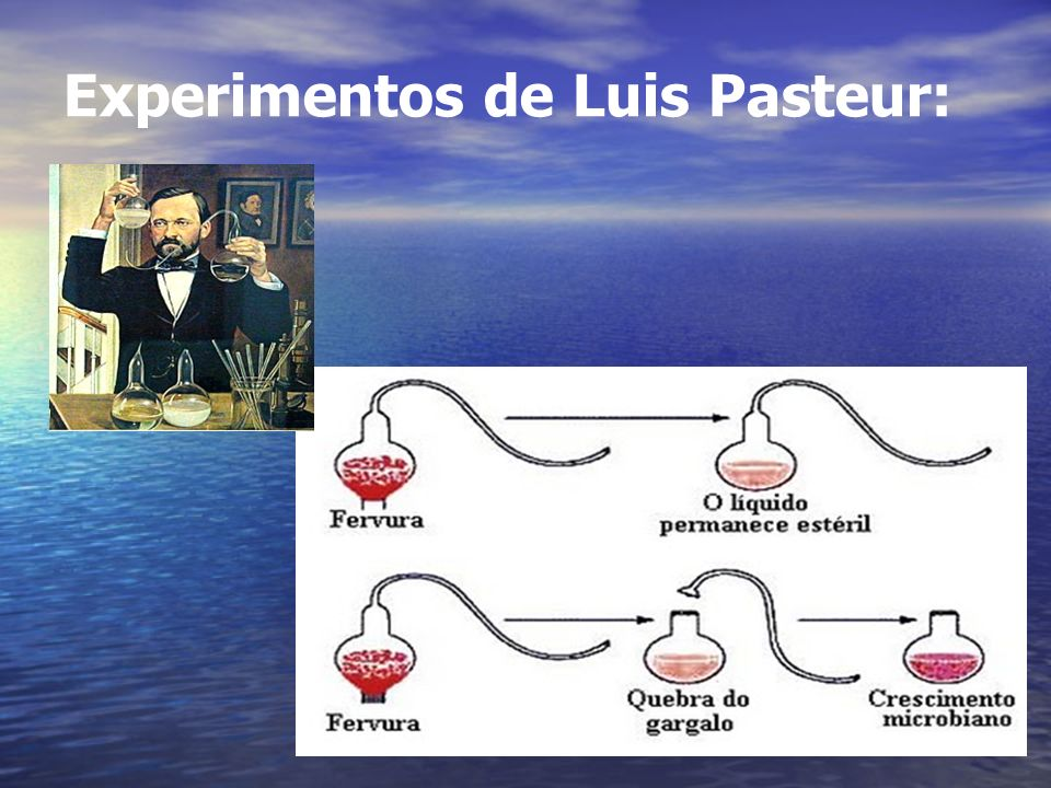 Experimentos de Luis Pasteur: