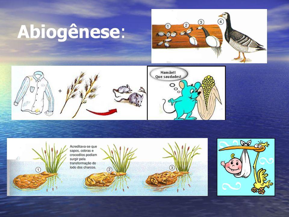Abiogênese: