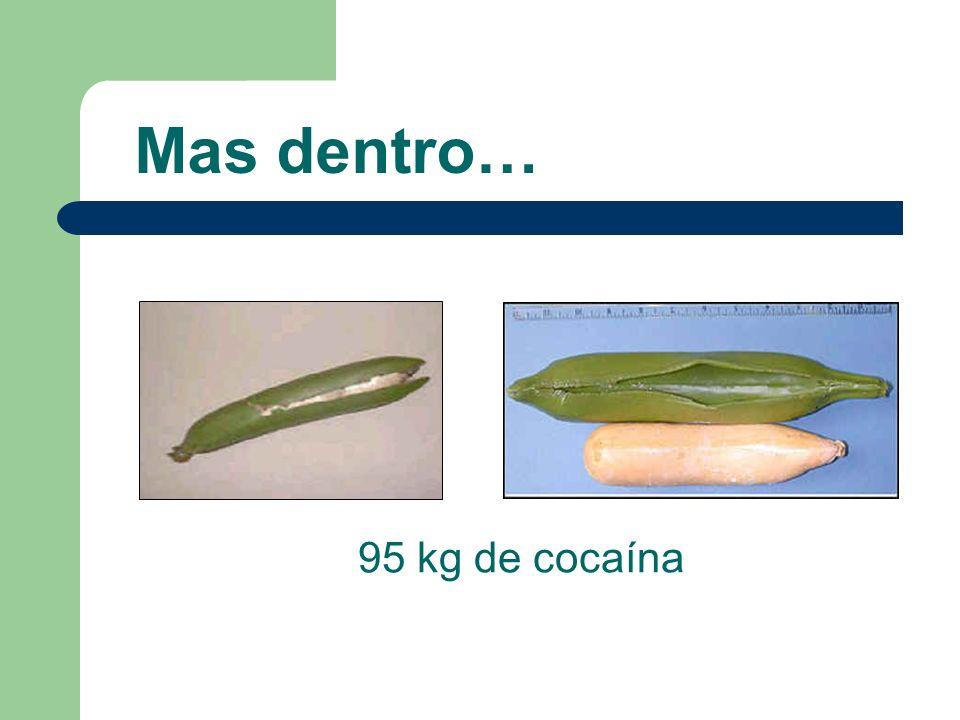 Mas dentro… 95 kg de cocaína