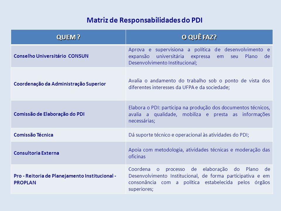 Matriz de Responsabilidades do PDI