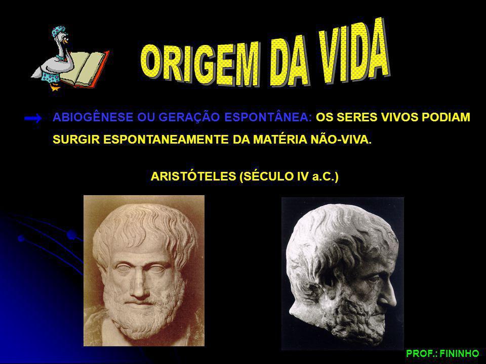 ARISTÓTELES (SÉCULO IV a.C.)