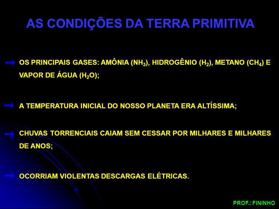 AS CONDIÇÕES DA TERRA PRIMITIVA