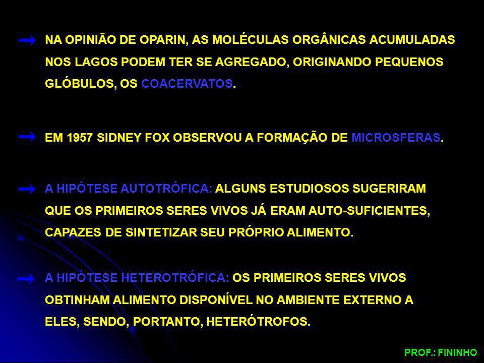 EM 1957 SIDNEY FOX OBSERVOU A FORMAÇÃO DE MICROSFERAS.