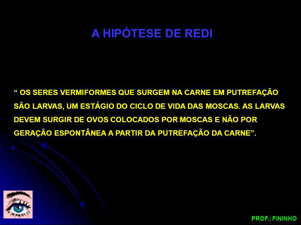 A HIPÓTESE DE REDI