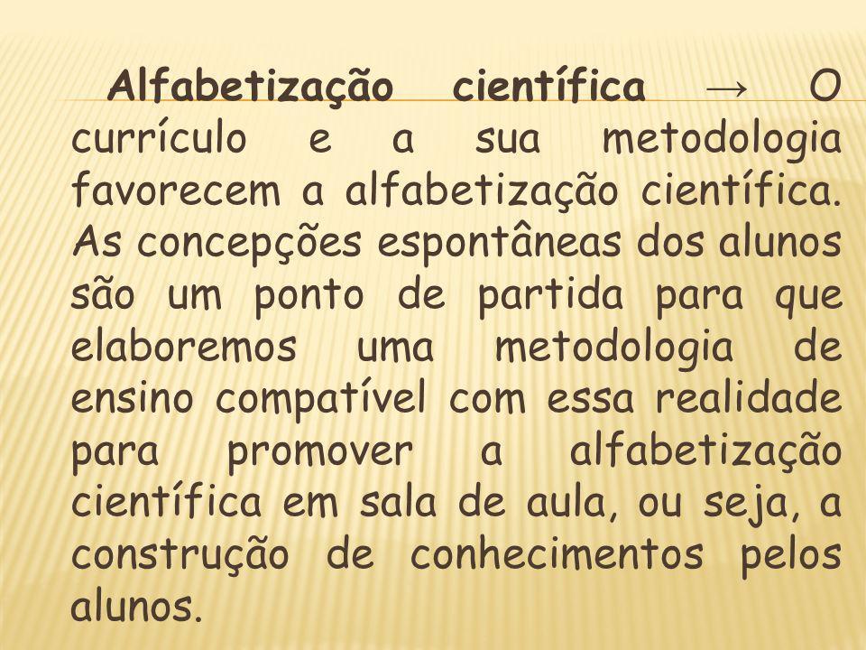 Alfabetização científica → O currículo e a sua metodologia favorecem a alfabetização científica.