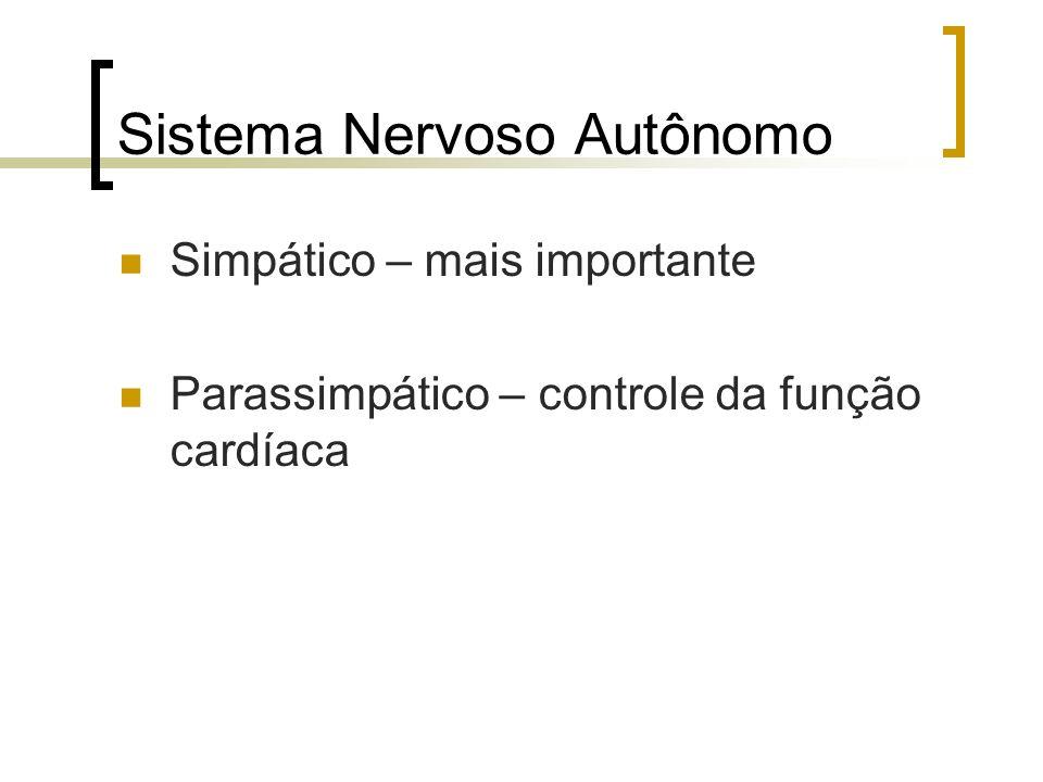 Sistema Nervoso Autônomo