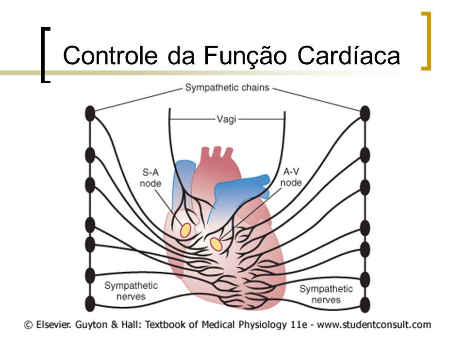 Controle da Função Cardíaca