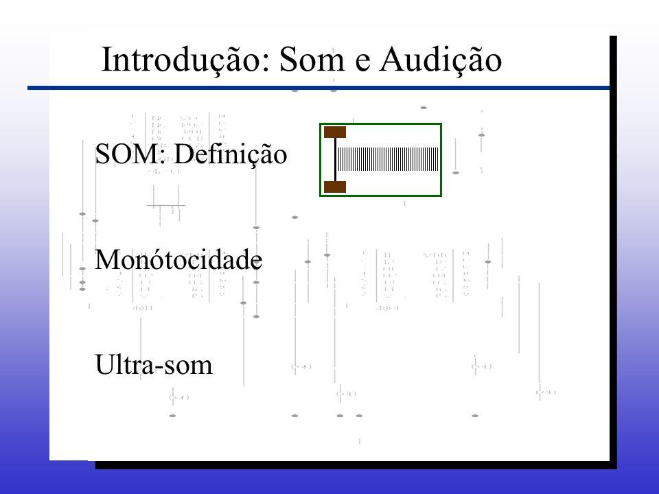 Introdução: Som e Audição