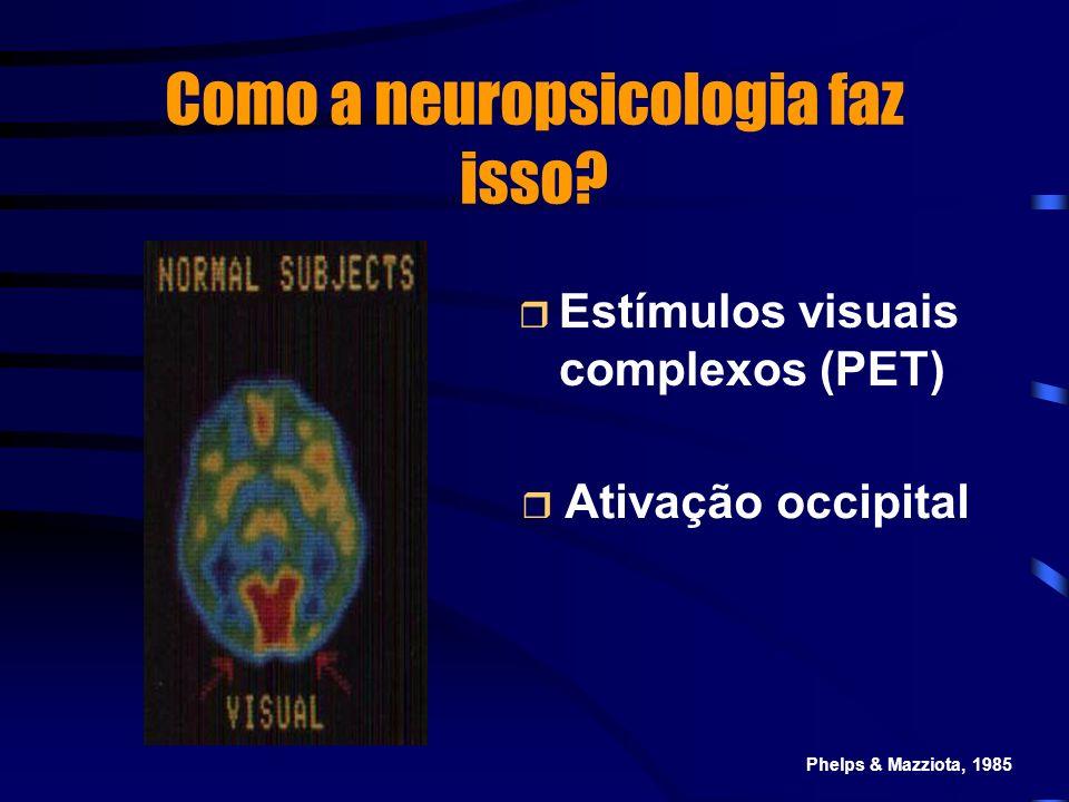 Como a neuropsicologia faz isso