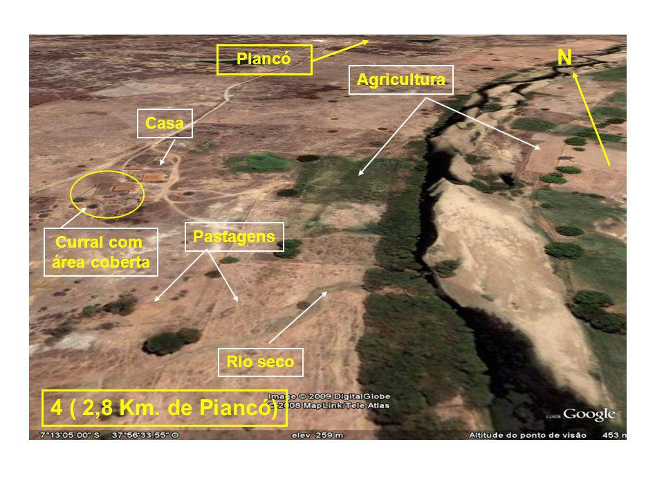 N 4 ( 2,8 Km. de Piancó) Piancó Agricultura Casa Pastagens Curral com