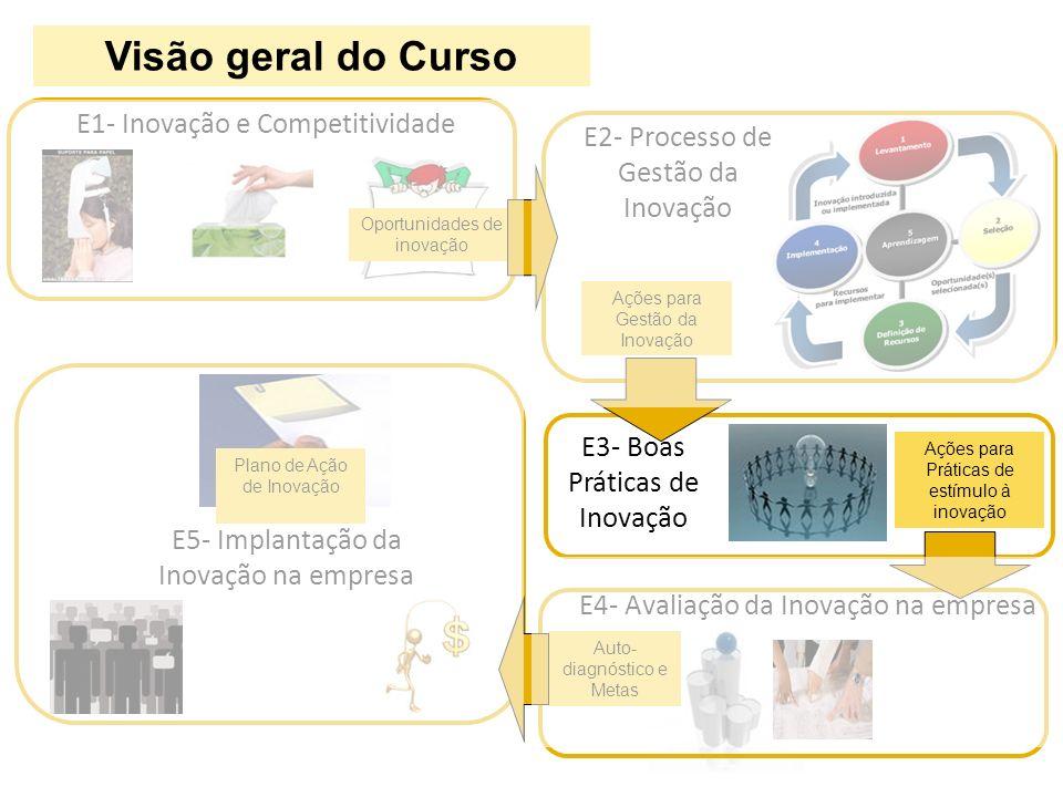 Visão geral do Curso E1- Inovação e Competitividade