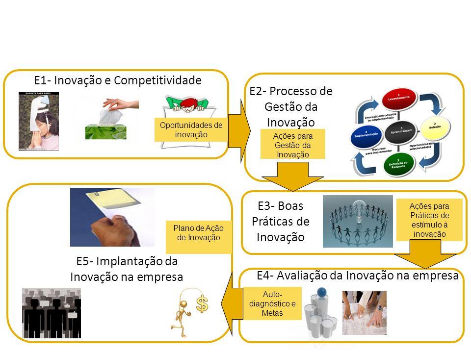 E1- Inovação e Competitividade E2- Processo de Gestão da Inovação