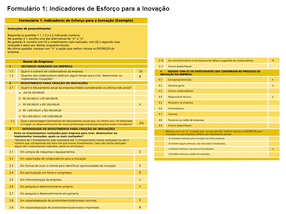 Formulário 1: Indicadores de Esforço para a Inovação