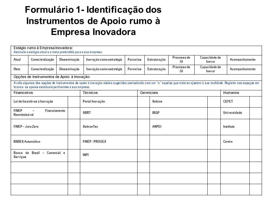 Formulário 1- Identificação dos Instrumentos de Apoio rumo à Empresa Inovadora