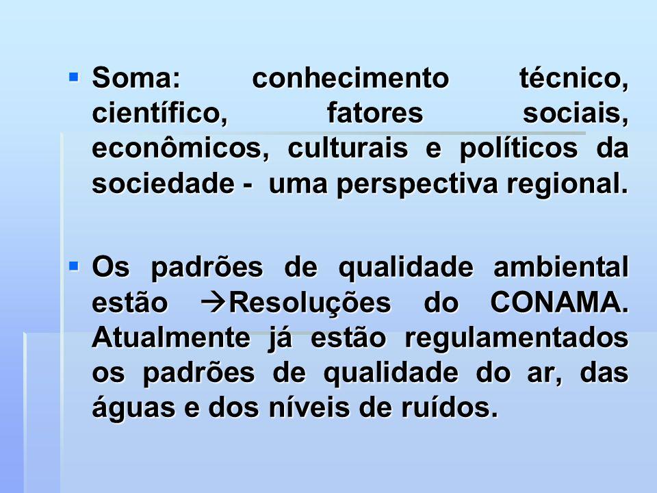 Soma: conhecimento técnico, científico, fatores sociais, econômicos, culturais e políticos da sociedade - uma perspectiva regional.