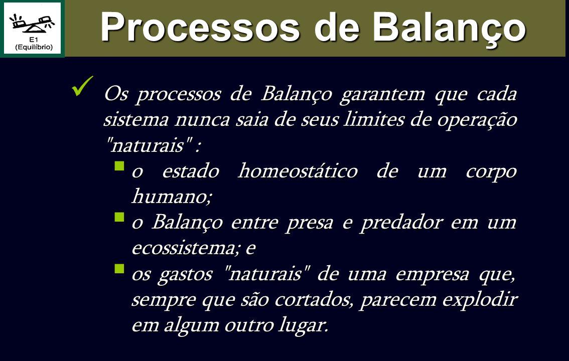 Processos de Balanço Os processos de Balanço garantem que cada sistema nunca saia de seus limites de operação naturais :