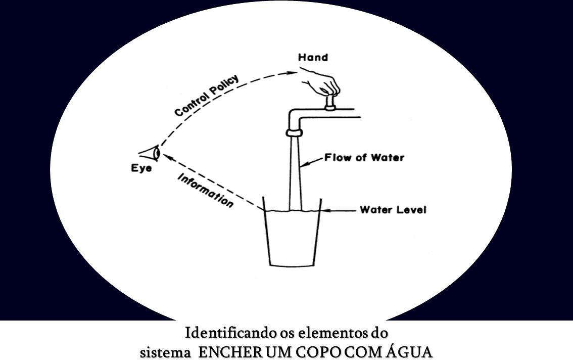 Identificando os elementos do sistema ENCHER UM COPO COM ÁGUA