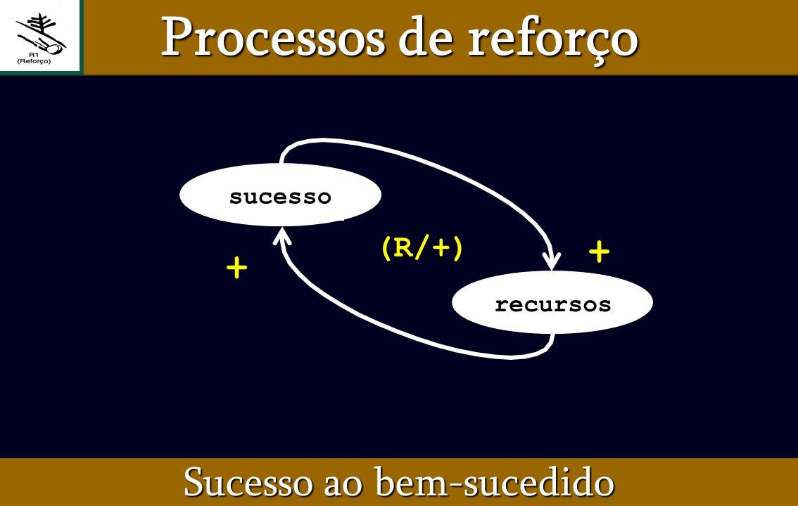 Sucesso ao bem-sucedido